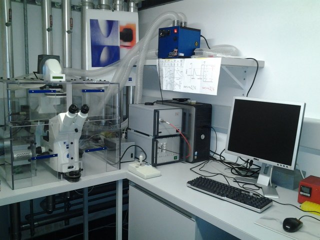 Calcium imaging workstation:  Zeiss Axiovert 200 inverted microscope