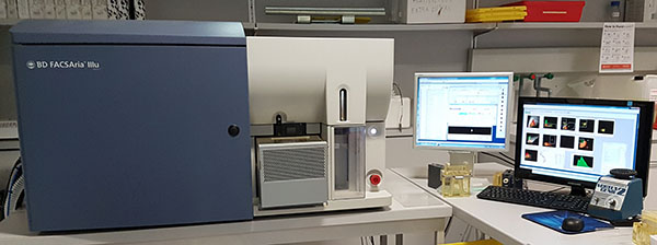 Cell sorter BD FACSAria III